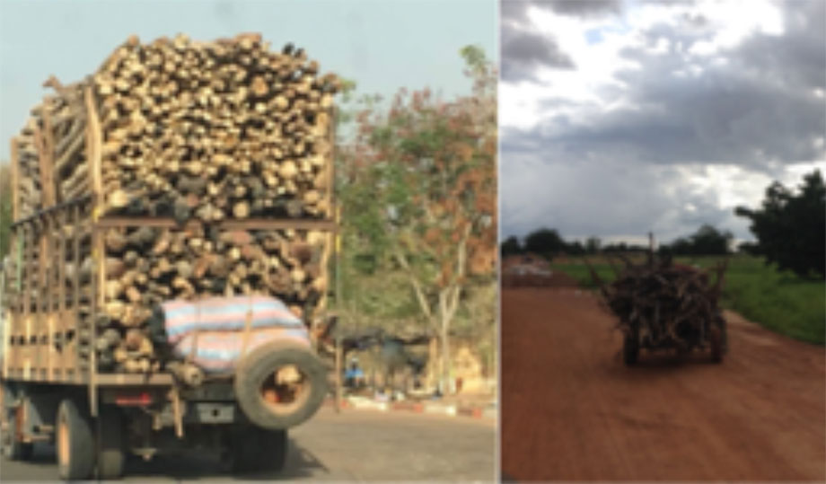 fuelwood territorialities