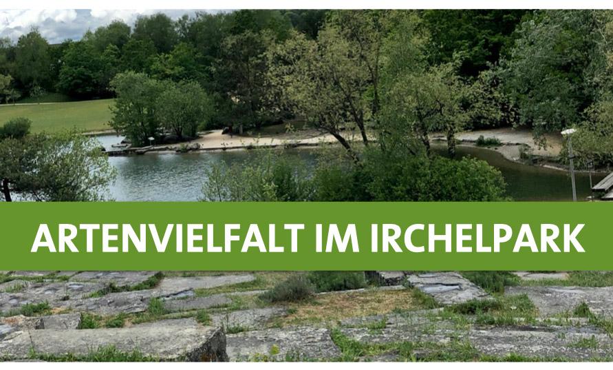 irchelpark
