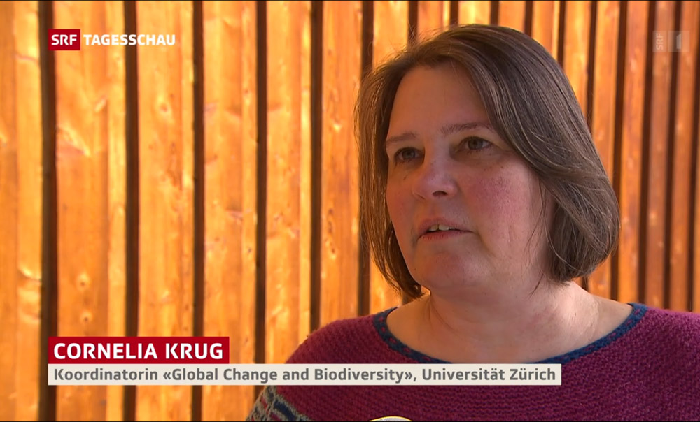 screenshot SRF Cornelia Krug